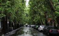 باد و باران در کدام استانها دیده میشود؟