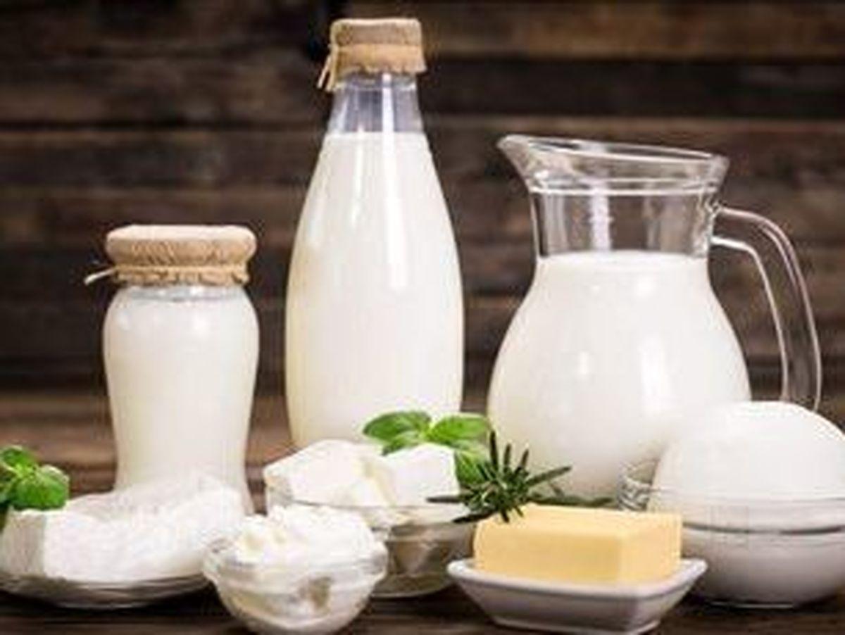 خبر خوب از قیمت شیر| افزایش قیمت شیر منتفی می شود