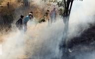 مهارآتشسوزی جنگل نکاء پس از چند ساعت تلاش نیروهای محلی