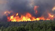 ازشروع سال تا به امروز ۳۰ فقره آتشسوزی در جنگلهای شمال