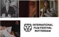 دعوت از ۴ فیلم ایرانی به جشنواره روتردام هلند