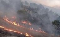 زاگرس | آتشسوزی زاگرس و خطر نگاه مکانیکی به توسعه