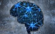امیدی تازه برای درمان قطعی آلزایمر