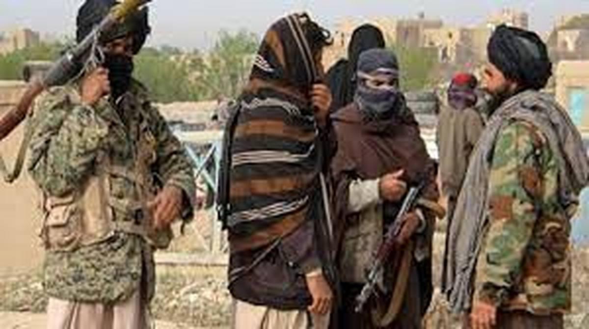 بیش از ۸۰ شهرستان بدست طالبان افتاد