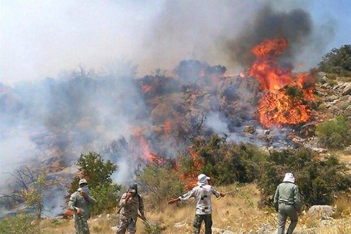 آتش سوزی  |  پارک ملی سالوک اسفراین دچار آتشسوزی شد