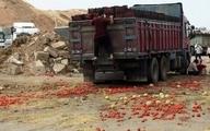 شیوه نادرست صادرات گوجه فرنگی