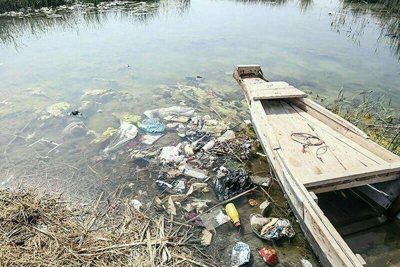 زباله آبادان در تالاب شادگان