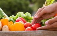 چند پیشنهاد تغذیهای برای پیشگیری از آلزایمر