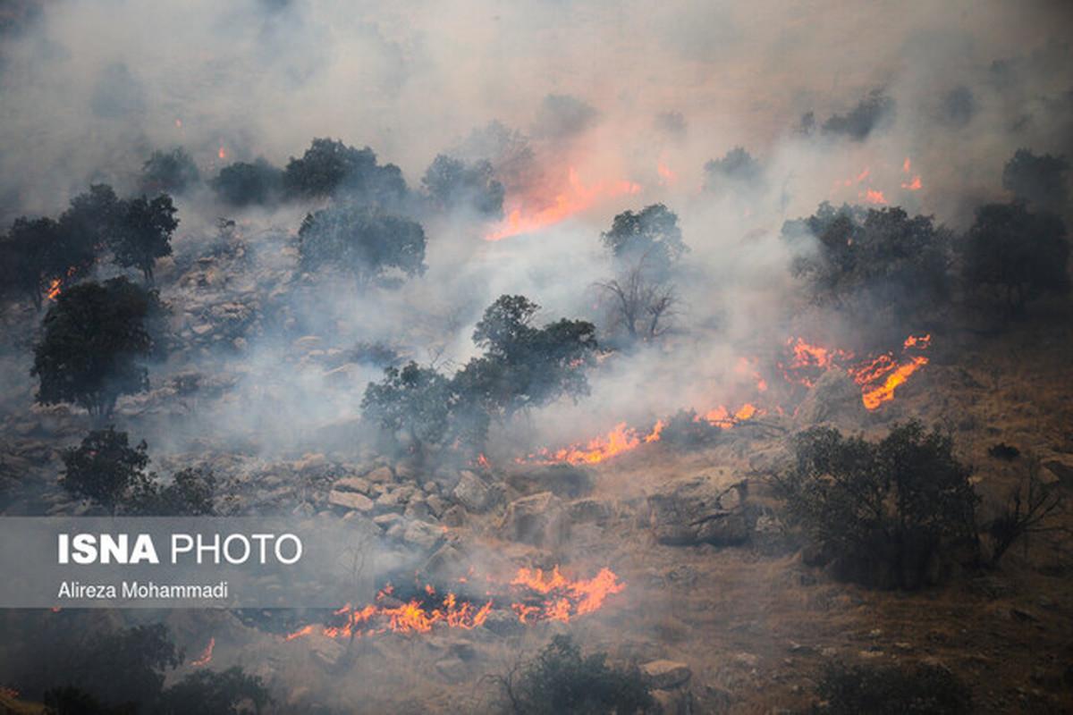 آسیب های جدی آتشسوزی نقطهای در جنگلها و مراتع
