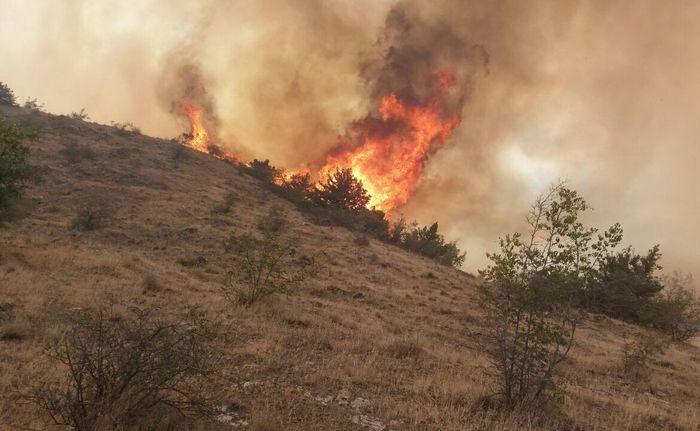 گزارش نهایی استاندار آذربایجان شرقی درباره آتش در جنگلهای ارسباران