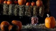 دیدنیهای امروز؛ از انتخابات آمریکا تا باغ گل دوبی