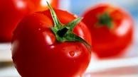 با آب گوجه فرنگی این بیماری را ضربه فنی کنید + جزئیات