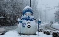 شنیدهاید زمستان پُر برف و بارشی در راه است؟