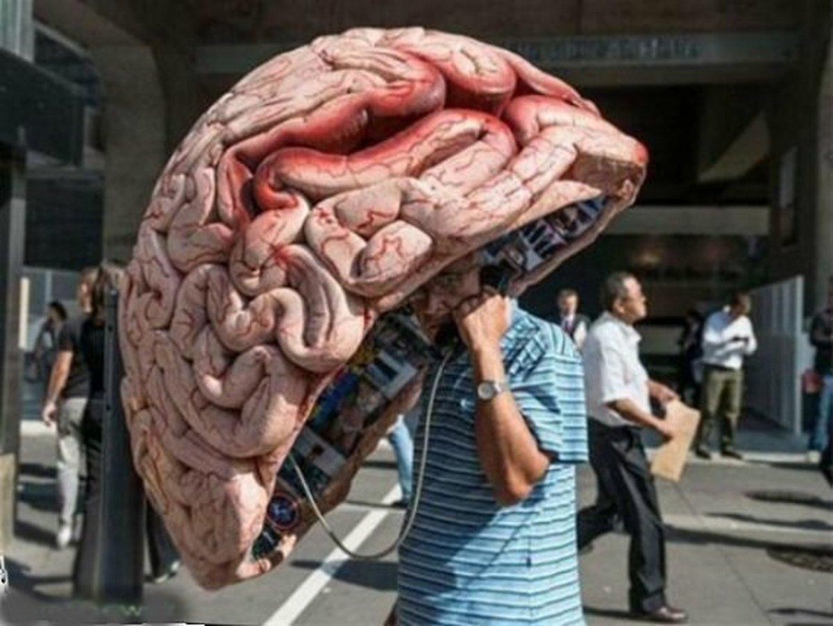 مغز شما در مقایسه با سن تقویمی چند ساله است؟
