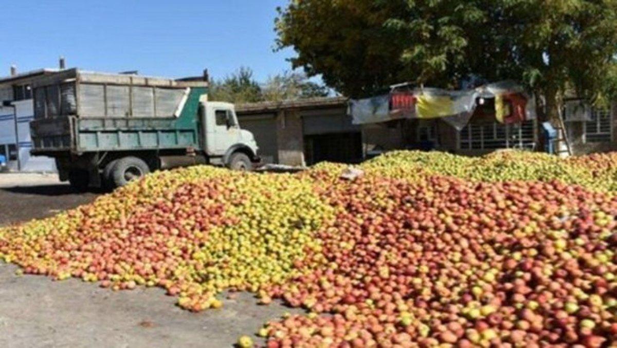 چه کسی مقصر از بین رفتن هزاران تن میوه مازاد است؟