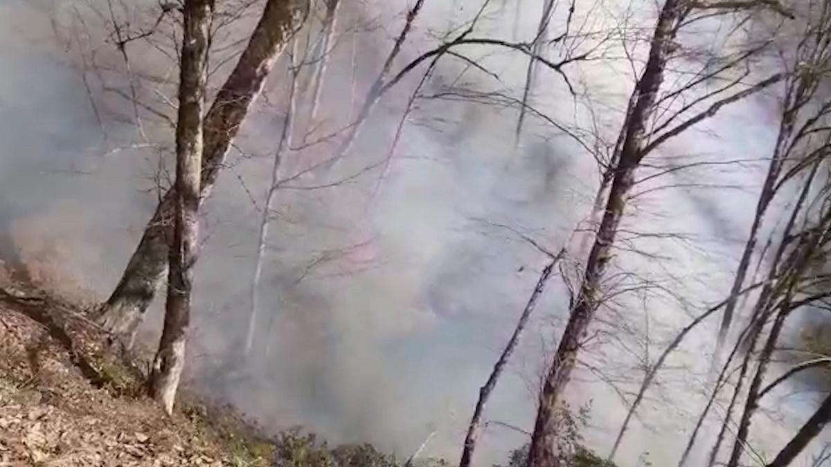 جنگل های رامسر غرق در آتش و دود
