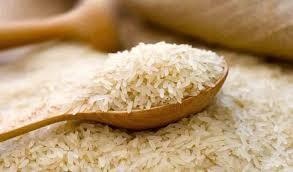 هزاران تن برنج در حال فاسد شدن| اعتبار از دست رفته و سکوت مسئولان