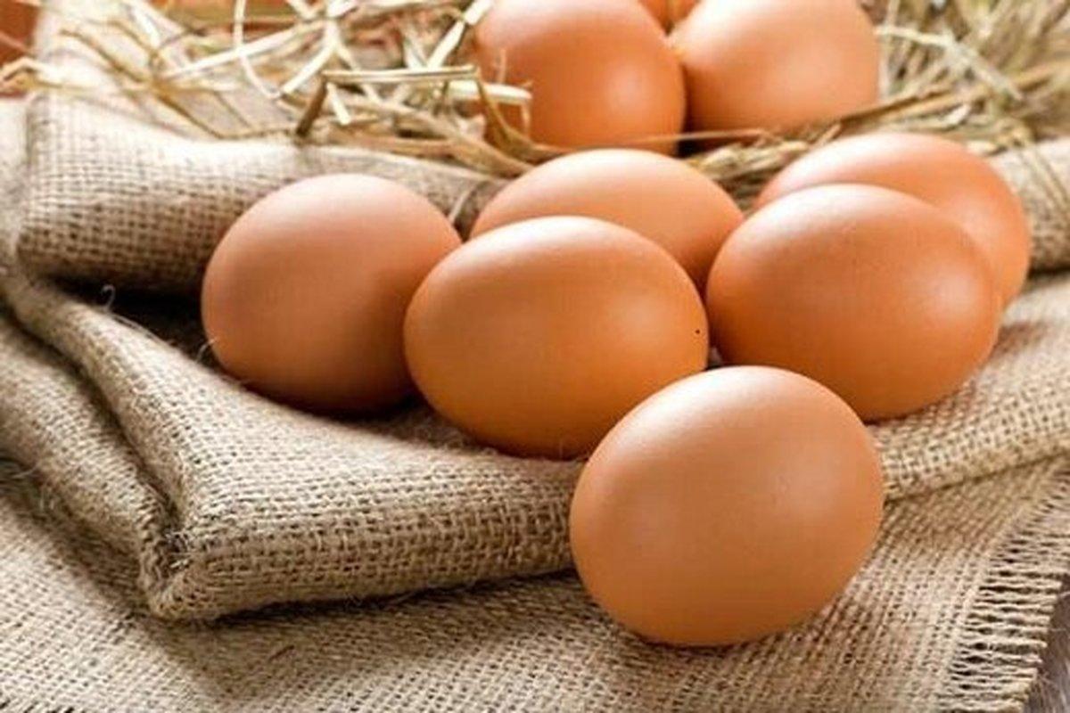 تخممرغ جایگزین گوشت شد | قیمت هر شانه تخم مرغ ۴۶ هزار تومان