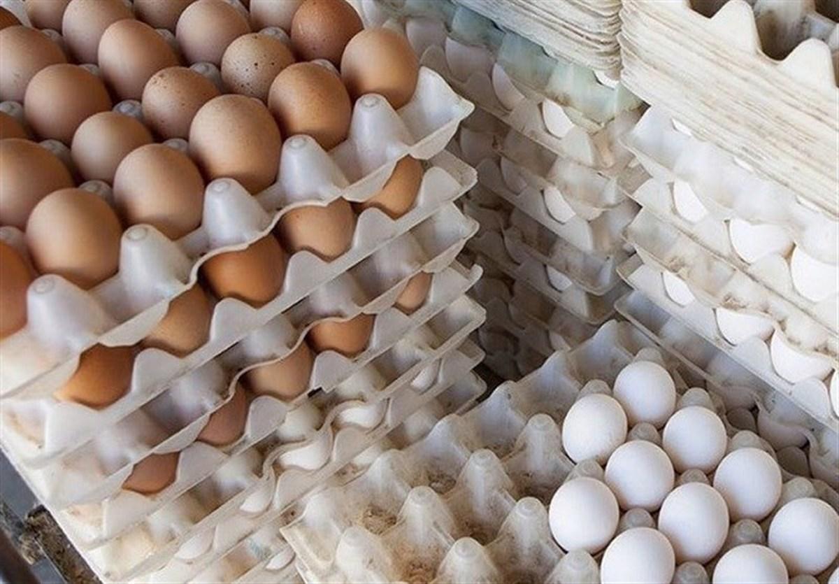 قیمت هر شانه تخم مرغ در بازار     کمبود عرضه تخم مرغ خواهد داشت