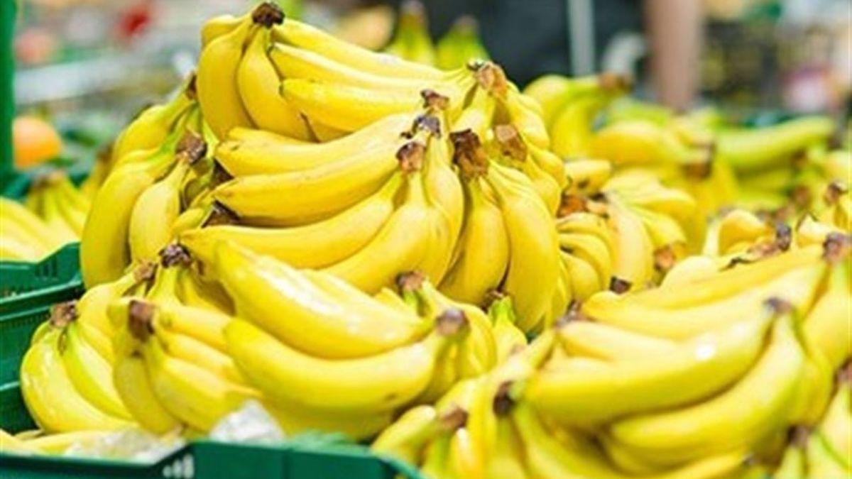 تب تند قیمت موز در بازار |  یخ زدگی علت گرانی سبزی