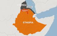 سازمان ملل      نیروهای اریتره باید اتیوپی را ترک کنند.