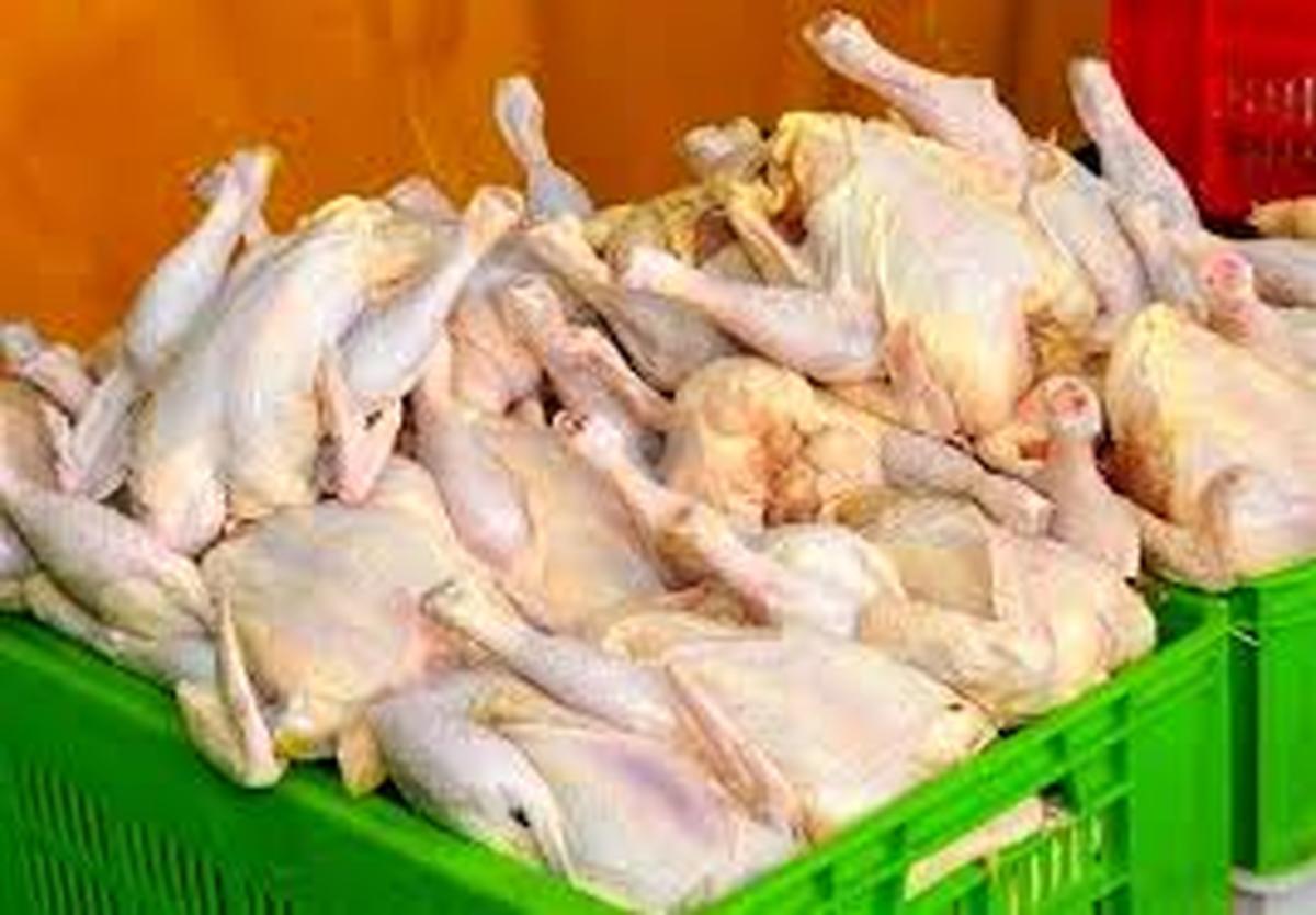 قیمت مصوب مرغ در سال جاری بدون تغییر میماند