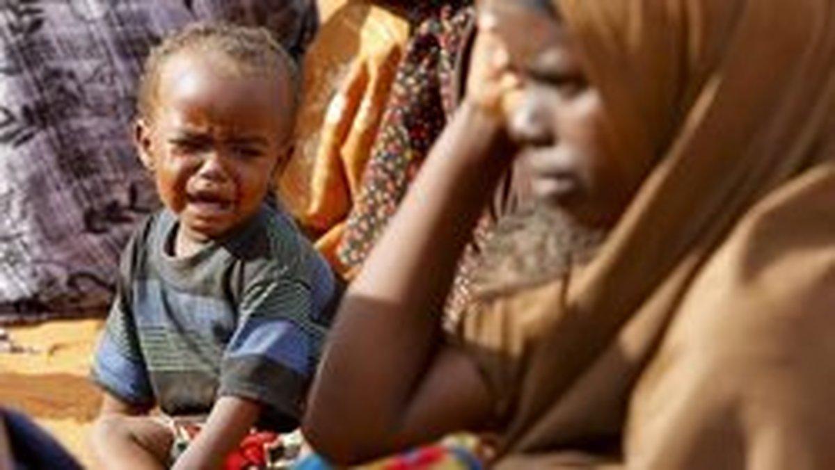 ۴۱ میلیون نفر از ساکنان جهان در معرض خطر گرسنگی قرار دارند