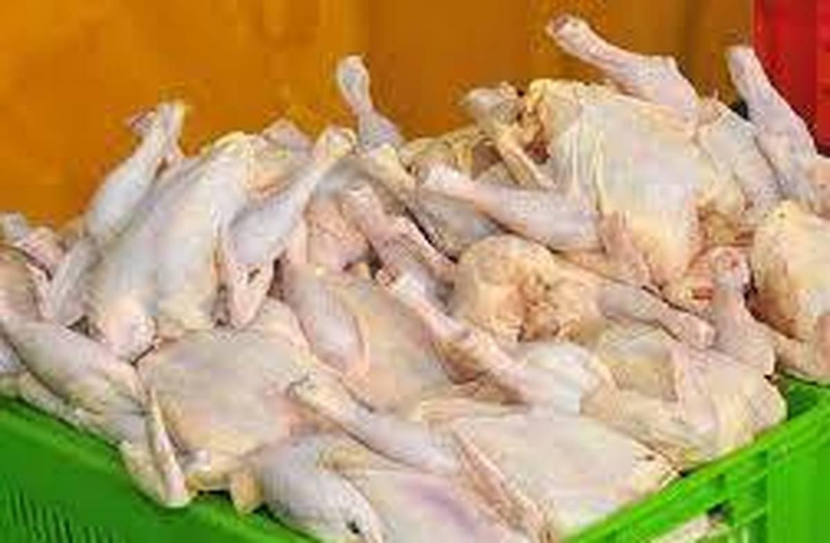 کشف 11 تن مرغ قاچاق در نمین اردبیل