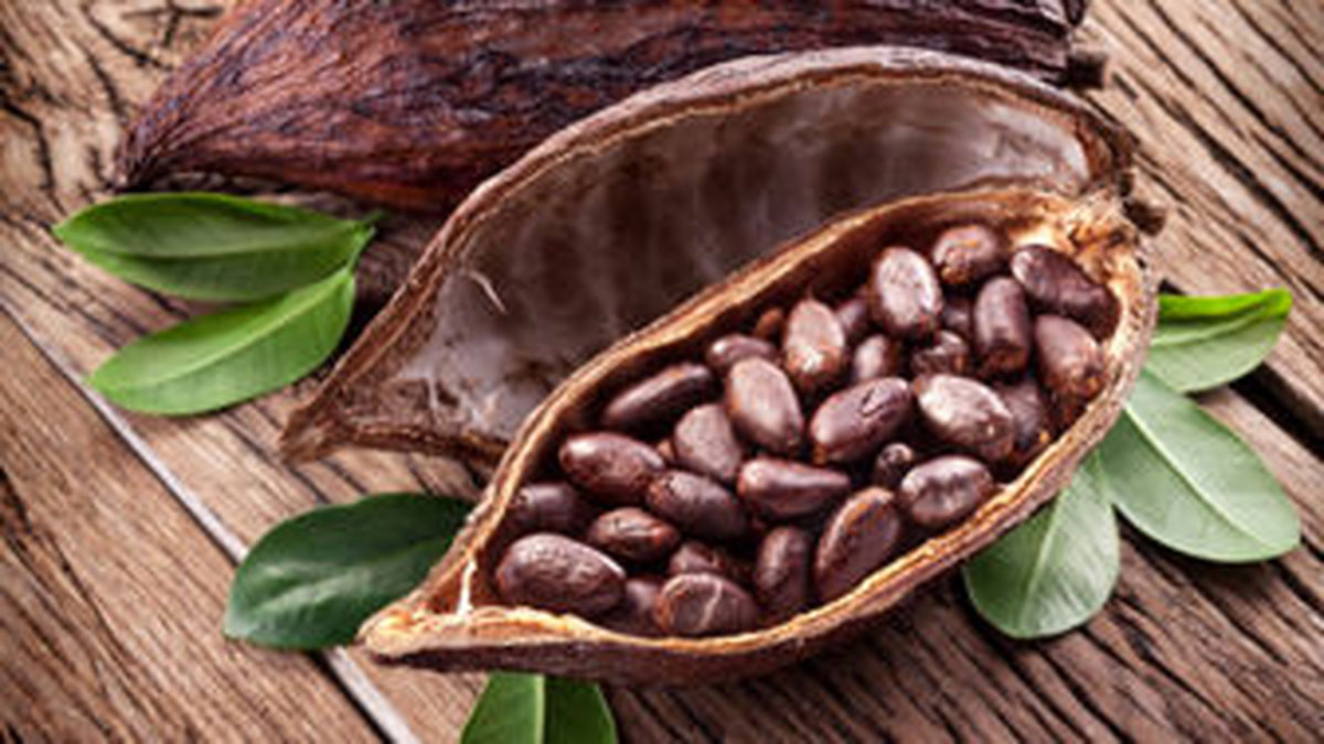 فواید کاکائو برای افزایش کارآیی مغز