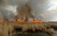 آتش سوزی در بخش عراقی هورالعظیم
