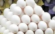 تخم مرغ 3 هزار تومان ارزان شد| دلایل افزایش قیمت تخم مرغ در ماه های اخیر