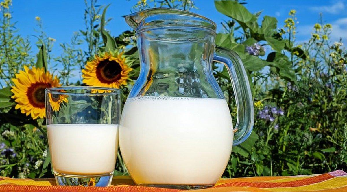 کاهش خطر ابتلا به بیماری های قلبی با مصرف منظم شیر