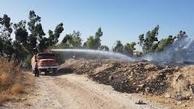 سه هکتار از جنگلهای زاویه مشعلی دزفول دچار آتش سوزی شده
