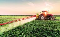 کشاورزی مدرن رمز خروج از بحران بیکاری | نگاهی به آمارها و ظرفیتهای فراموششده در دومین استان دارای بیشترین بیکار کشور 