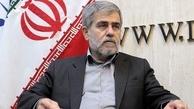 فریدون عباسی: بازرسان آژانس را را اخراج نمیکنیم، بلکه آنها را به کشور راه نمیدهیم