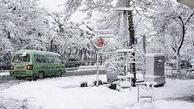 هواشناسی: بارش برف و باران در راه است