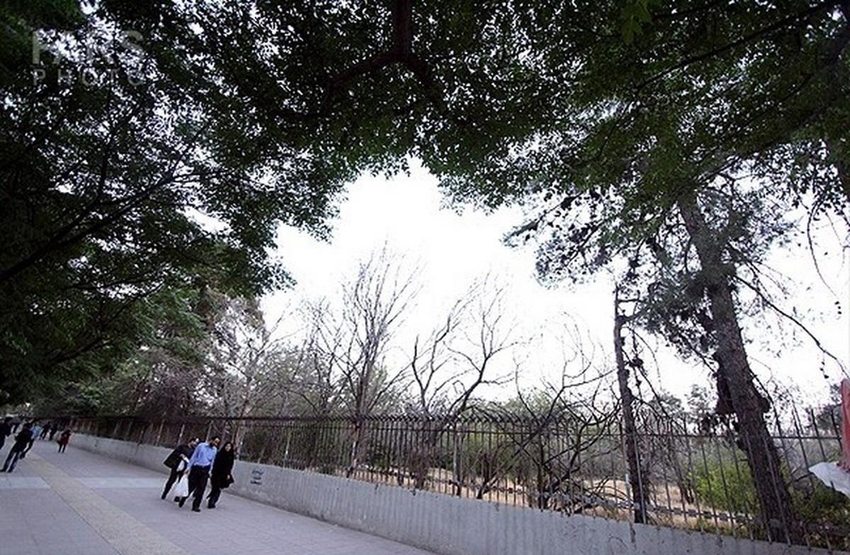 باز هم آتش سوزی در باغ فرزانه شیراز
