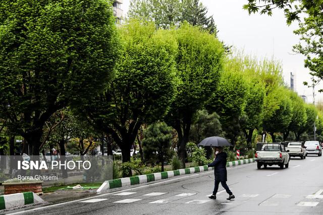 هواشناسی نسبت به بارندگی و کاهش دما در شمال کشور هشدار داد
