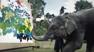 فیلهای که تابلوهای نقاشی خلق میکنند
