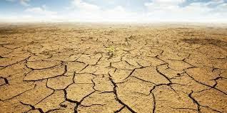 مرگ و میر ناشی از خشکسالی  | سلامت در برابر خشکسالی آسیب پذیر است
