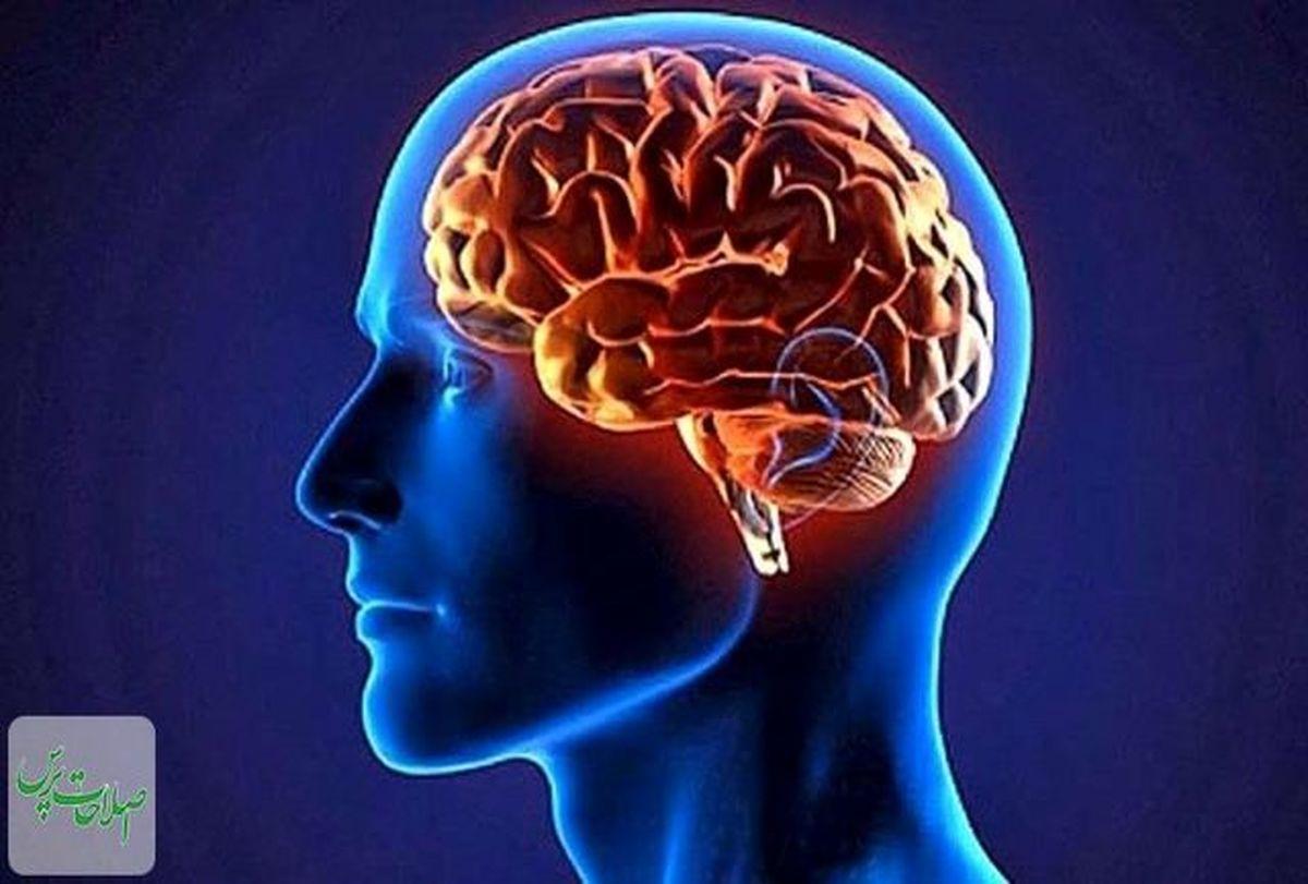 چرت نیمروزی به چابکی و نشاط ذهن کمک می کند