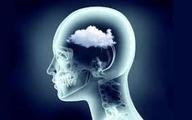 تقویت حافظه کوتاه مدت با این روش