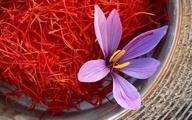 وضعیت صادرات زعفران چگونه است؟ | صادرات ۱۹۰ میلیون دلاری زعفران در سال گذشته