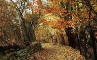 آخر هفتههای پاییزی کجا برویم؟