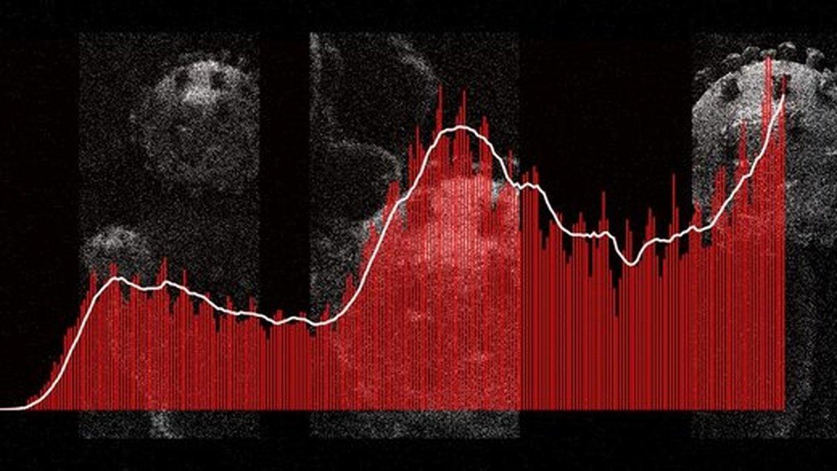 نمودارها هشدار میدهند: سفر نروید، موج مرگ در راه است