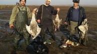 عاملان کشتار ۲۶ پرنده وحشی در گلستان بازداشت شدند