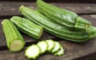 جالب ترین مسمومیت با مصرف کدو سبز