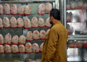 کمبود مرغ و افزایش سرسام آور قیمت آن در مشهد
