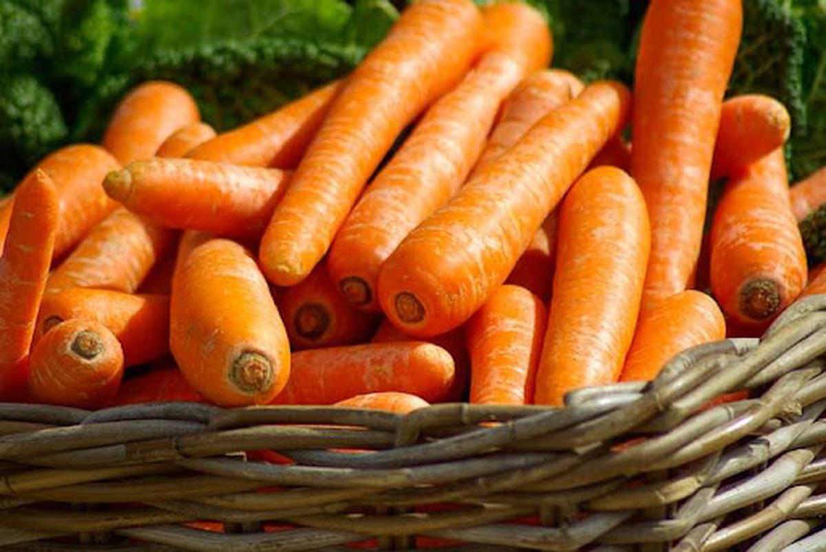 متهمان اصلی افزایش قیمت هویج در بازار