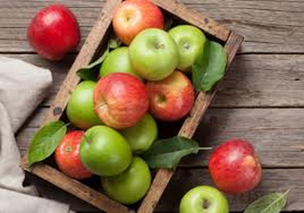 شمارش معکوس برای صدها هزار تن سیب